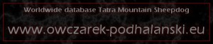 banner Owczarek-Podhalanski eu